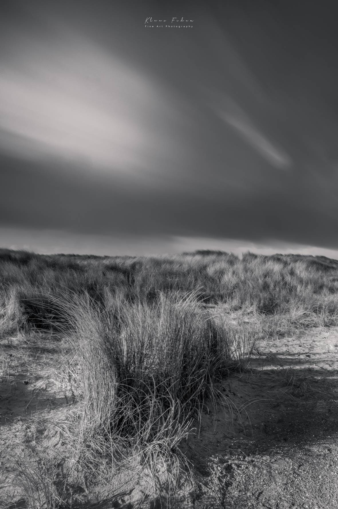 At the Northsea dunes